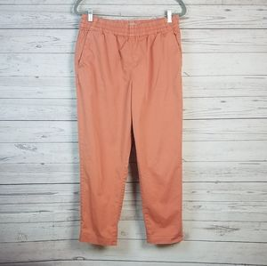 Everlane Terra Cotta Orange Pull On Pants 12